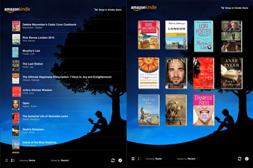 Kindle for ipad 3