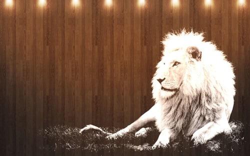 Mac OS X Lion Wallpapers -White Lion