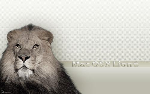 White Theme Mac Lion Wall