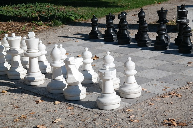 chess to relax