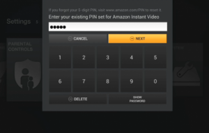 Amazon Fire Pin Entry